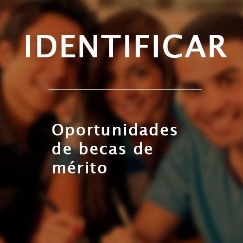 IDENTIFICAR-MERITOS